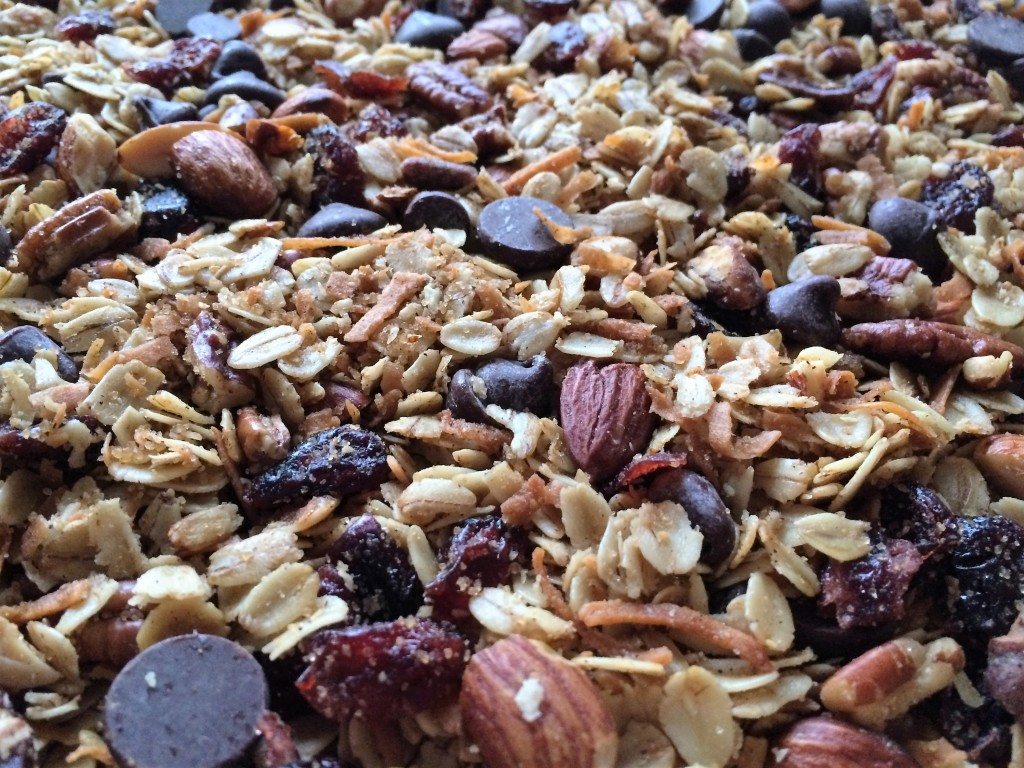 Coconut Chocolate Chip Granola with Cranberries and Nuts * Once In A Blue Spoon