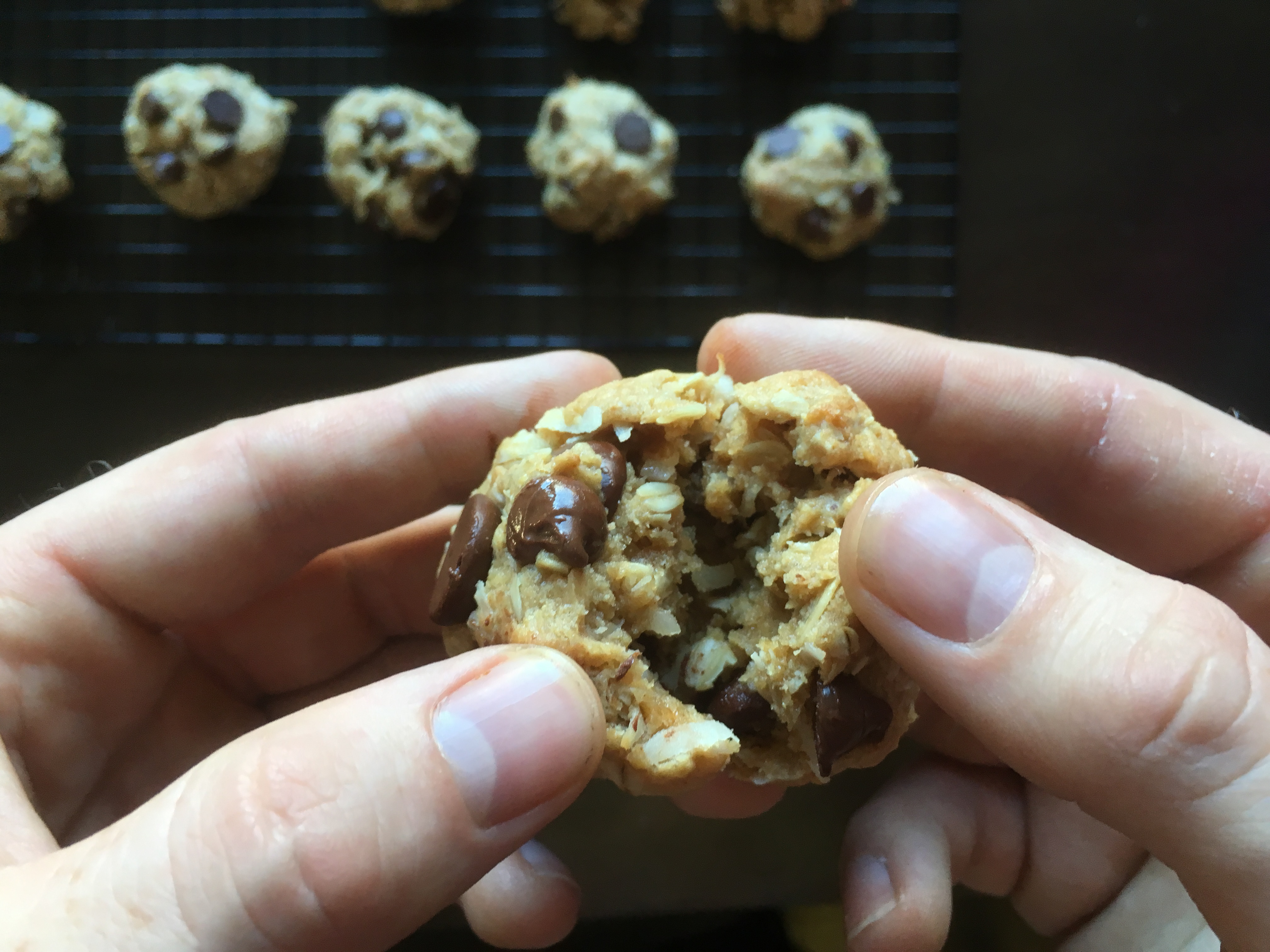 Peanut Butter Oatmeal Coconut Chip Cookies * Once in a Blue Spoon